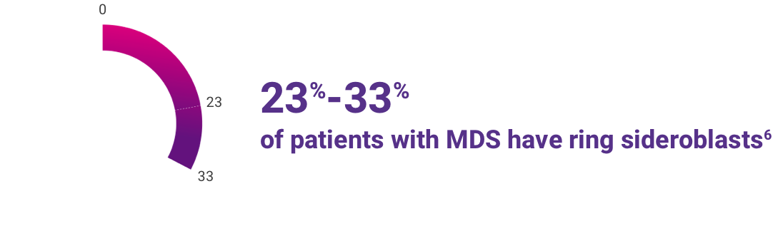 23% to 33% of patients with MDS have ring sideroblasts.